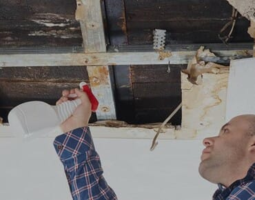 Landlord-Tenant dispute in Long Beach is a reminder to deal with mold ASAP