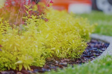 How to Improve Your Property's Curb Appeal | Buildium